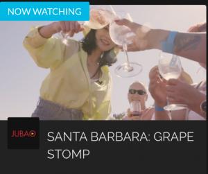 Wine Tasting cheers